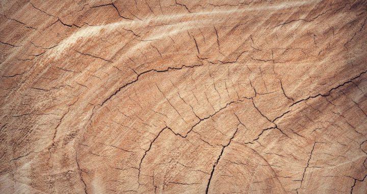 Panelen-op-maat-van-hout